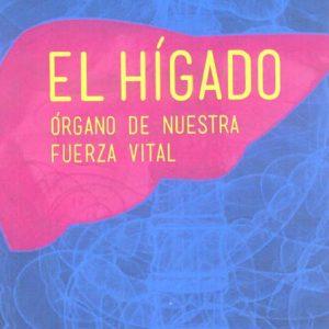 HIGADO, EL