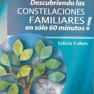 DESCUBRIENDO LAS CONSTELACIONES FAMILIARES