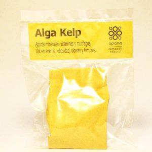 Algas Kelp (Macrocystis pyrifera)