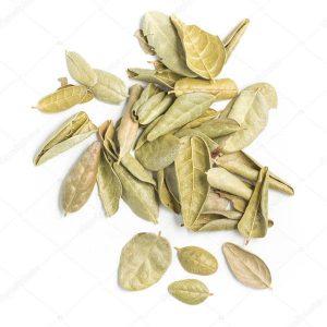 Boldo en hojas x 50gr