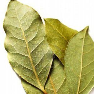 Laurel en hojas x 30gr