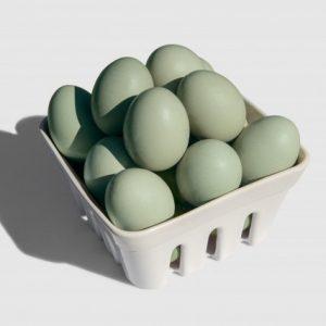 Huevos Araucanos x 6uni